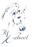 logo_brand4